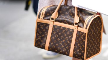 Is Louis Vuitton So Expensive